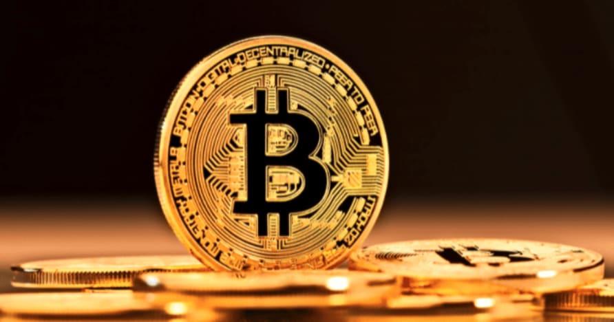 Petua Perjudian Bitcoin yang Terbukti untuk Pemain Kasino Langsung
